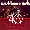 [40th Anniversary - Live in London LP - cover art]